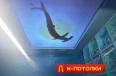 Натяжной потолок, фотопечать с подсветкой.